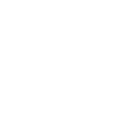 icon-themeinfo